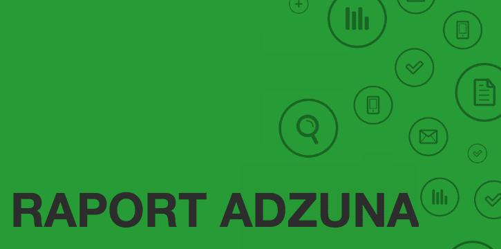 Raport-Adzuna